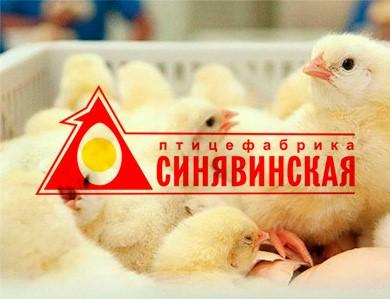 Подтверждение соответствия АО Птицефабрика Синявинская требованиям ISO 22000